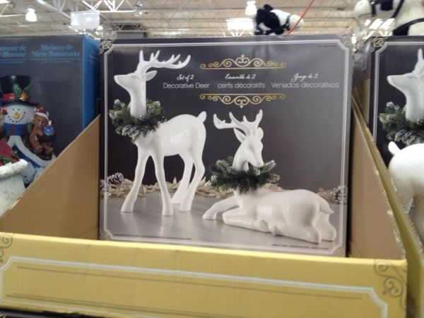 WhiteDeer.jpeg