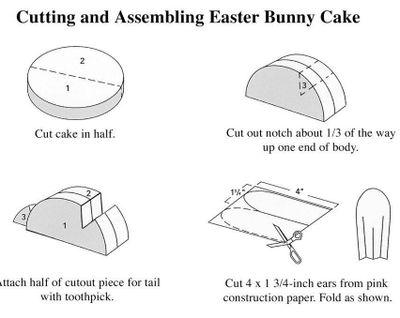 bunny cut.jpg