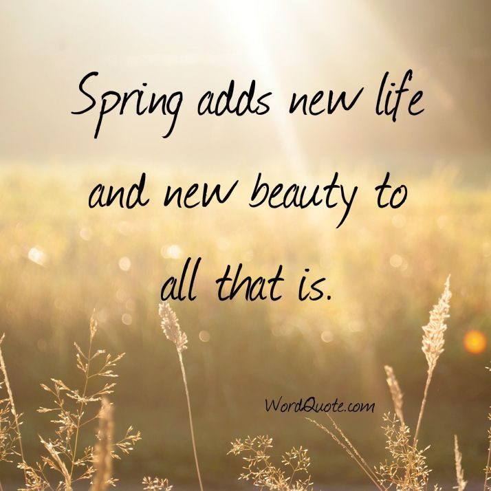 26-spring-quotes-10.jpg