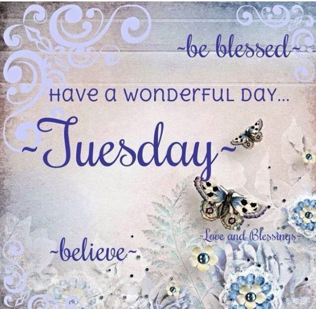 tuesday-quotes-of-the-day-best-of-pin-by-nadine-on-happy-tuesday-pinterest-image-of-tuesday-quotes-of-the-day.jpg