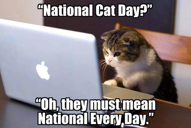 national-cat-day.jpg