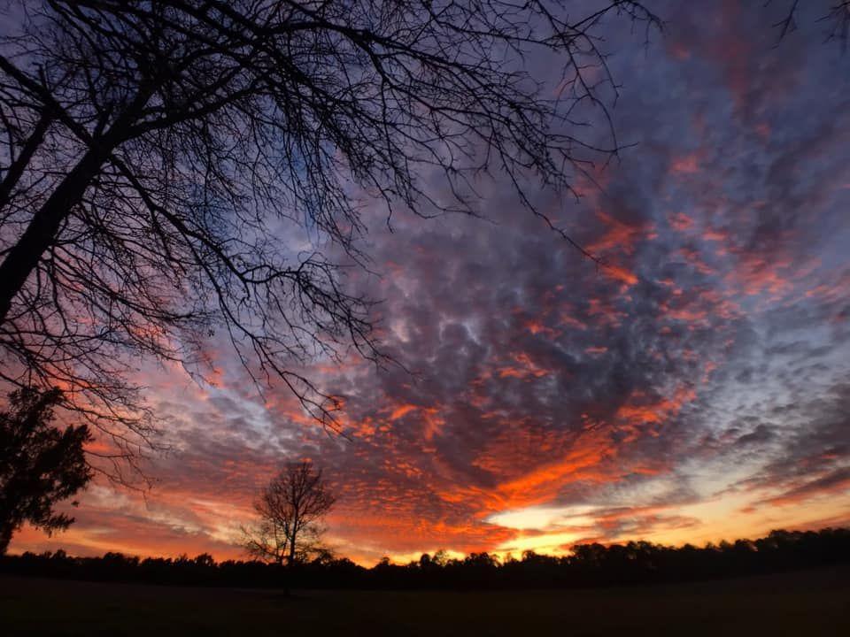 forrest co sunset.jpg