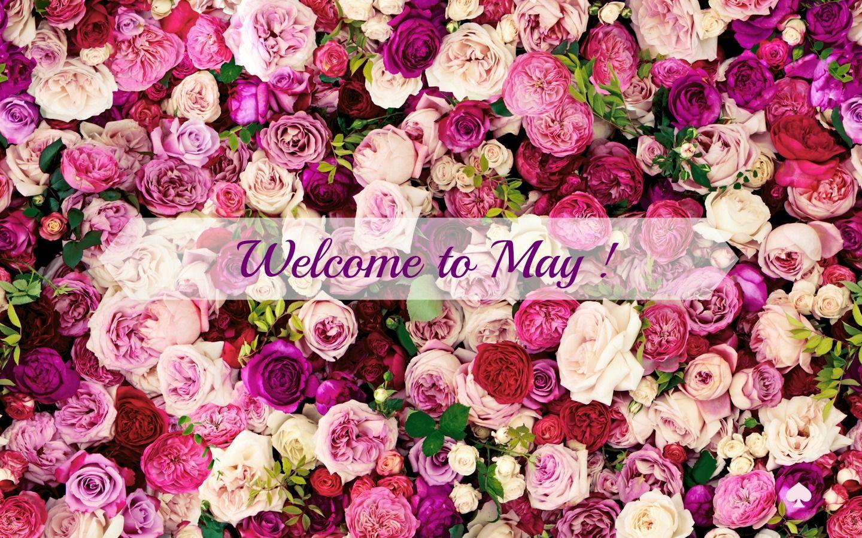 welcome may.jpg