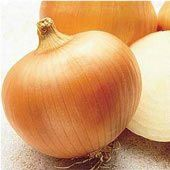 Yellow-Sweet-Spanish-Onion-Seeds.jpg