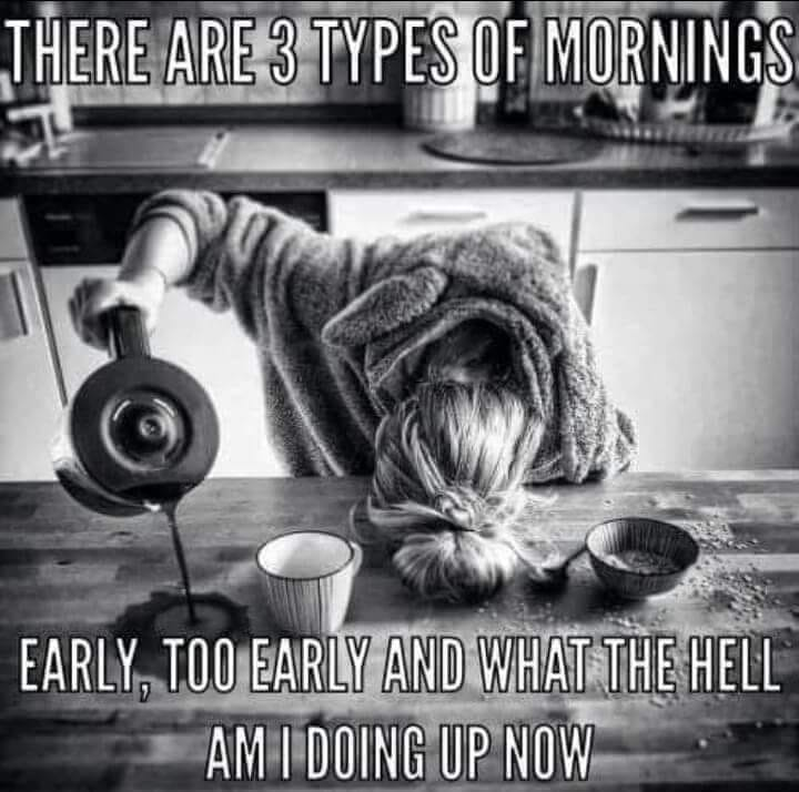3 Types Of Morning..png