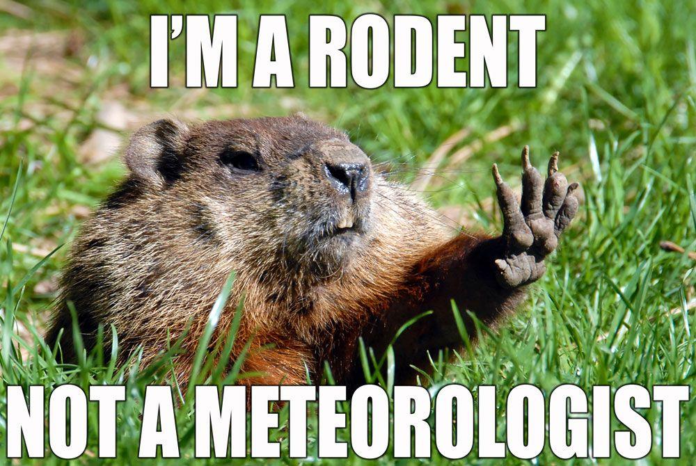 groundhog_meme (1).jpg