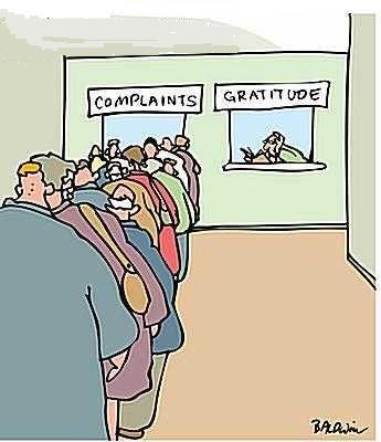 Gratitude / complaints