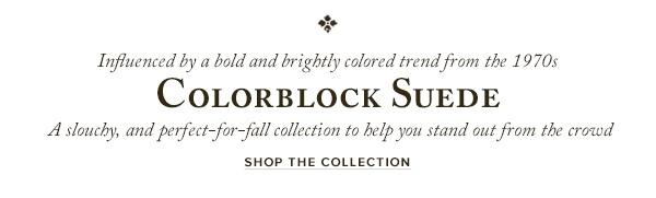 Colorblock-Suede-Top2.jpg
