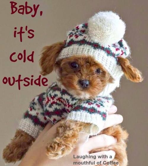 Baby Its Cold Outside.jpg