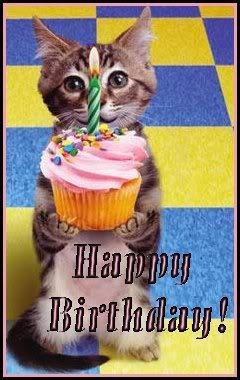 Birthday-Cat.jpg