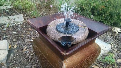 Butterfly on Fountain.jpg