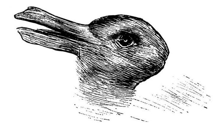 143-170022-143-133080-rabbit-duck-1455650631-1498754984.jpg