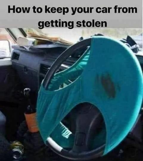 car_theft_deterrent.jpg