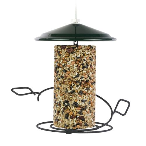 500x500-birdfeeders-seedcylinder.jpg