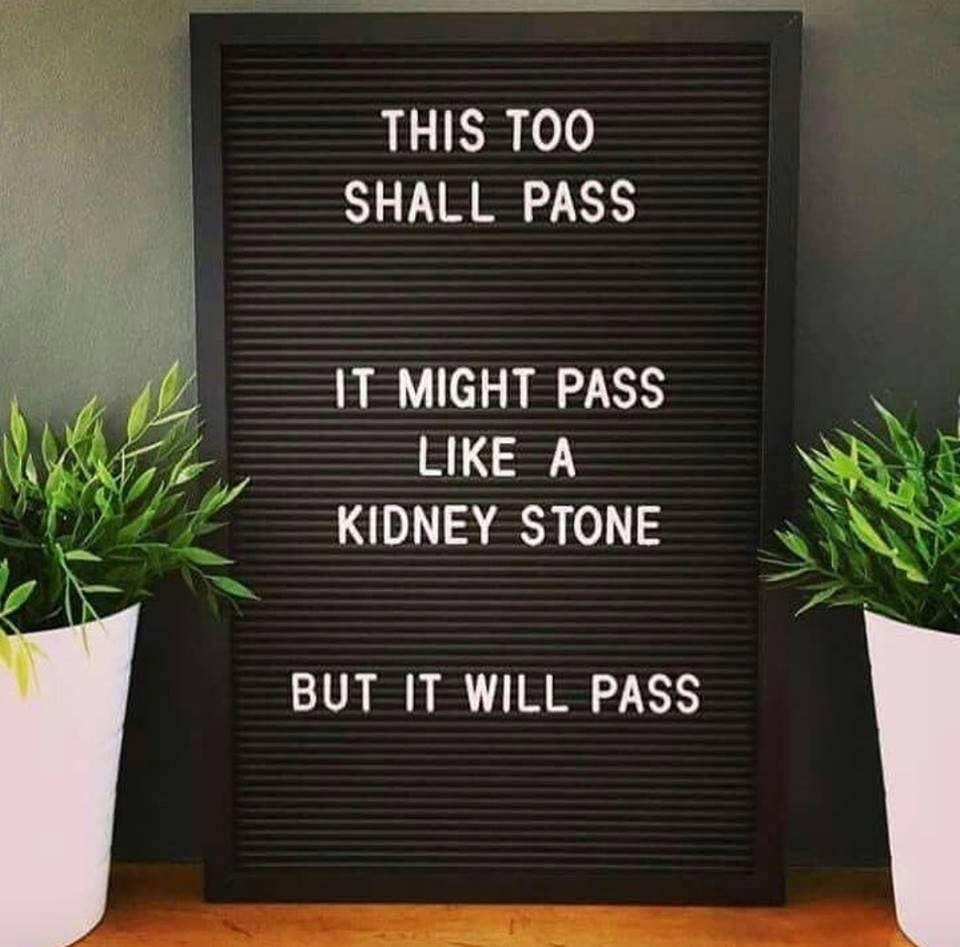 this too shall pass.jpg