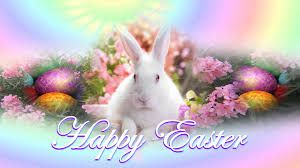 beautiful easter bunny.jpg