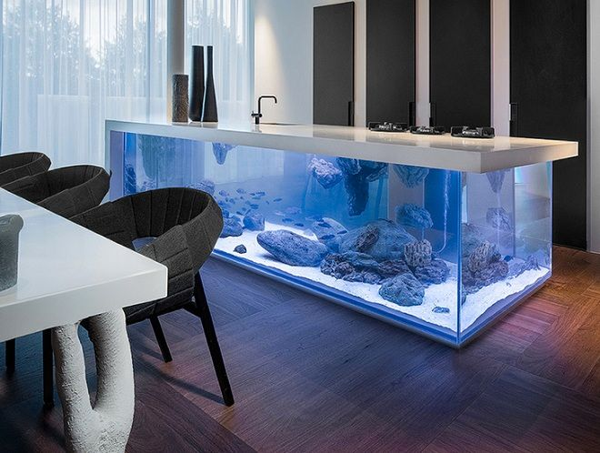 kitchen island aquarium.jpg