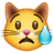 crying-cat-face_1f63f.png