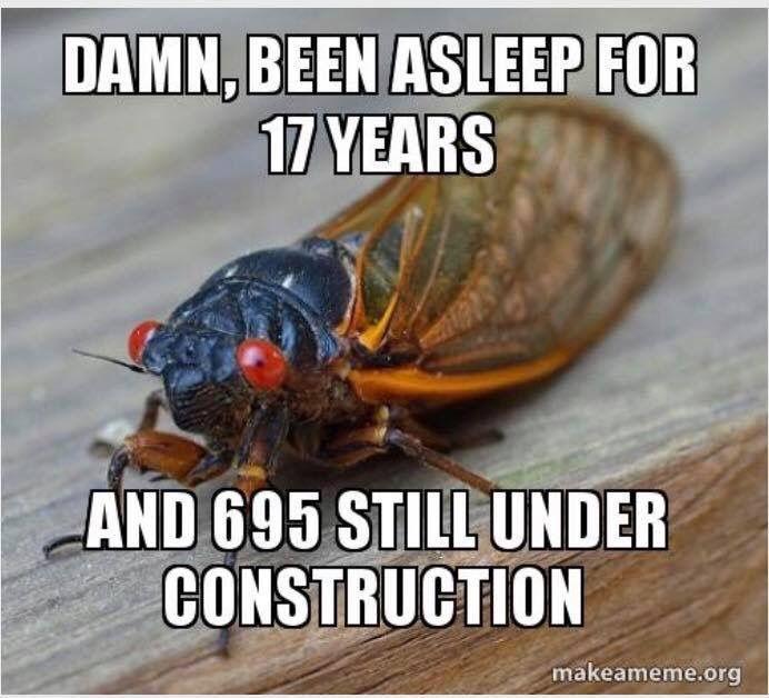 696 meme cicada.jpg