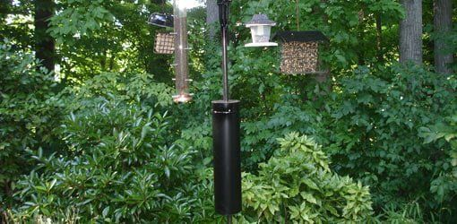 750-9-diy-squirrel-raccoon-bird-feeder-guard.jpg
