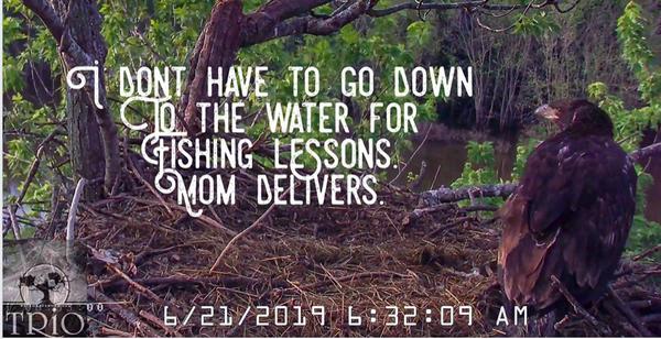 Screen Shot 2019-06-21 at Fri, Jun 21, 2019-11.41.52 AM.png