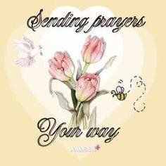 06ccc0eca14d6c1db1d8fab68b521bb2--sending-prayers-prayer-quotes.jpg