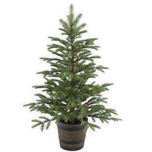 4%27+Green+Spruce+Artificial+Christmas+Tree.jpg