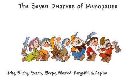 7 Dwarfs of Menopause.jpg
