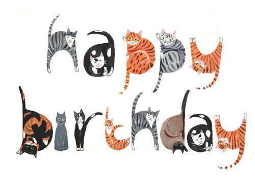 Happy Birthday Cards Cat Lovers To All S Forums
