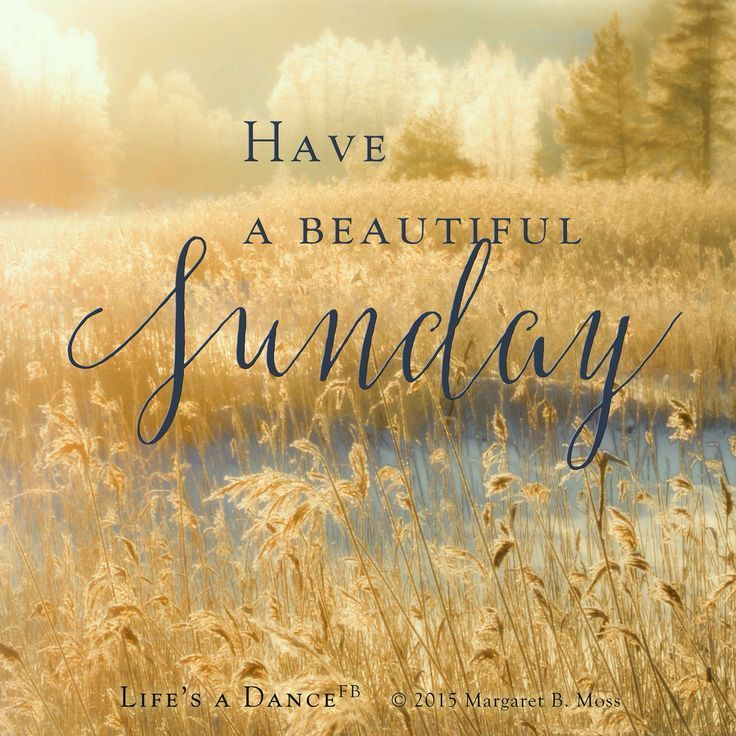 219754-Have-A-Beautiful-Sunday.jpg