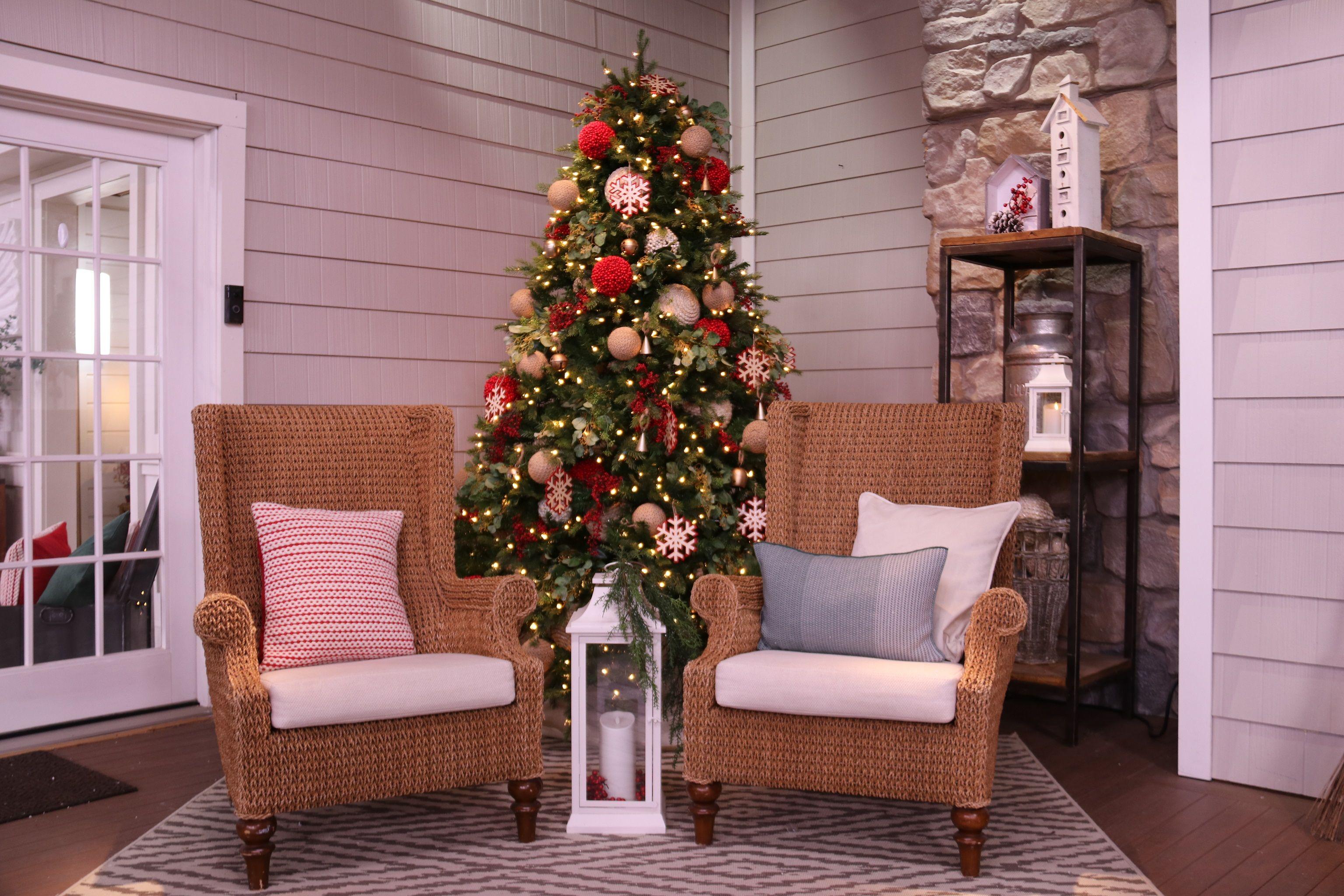 Tree and chairs.JPG