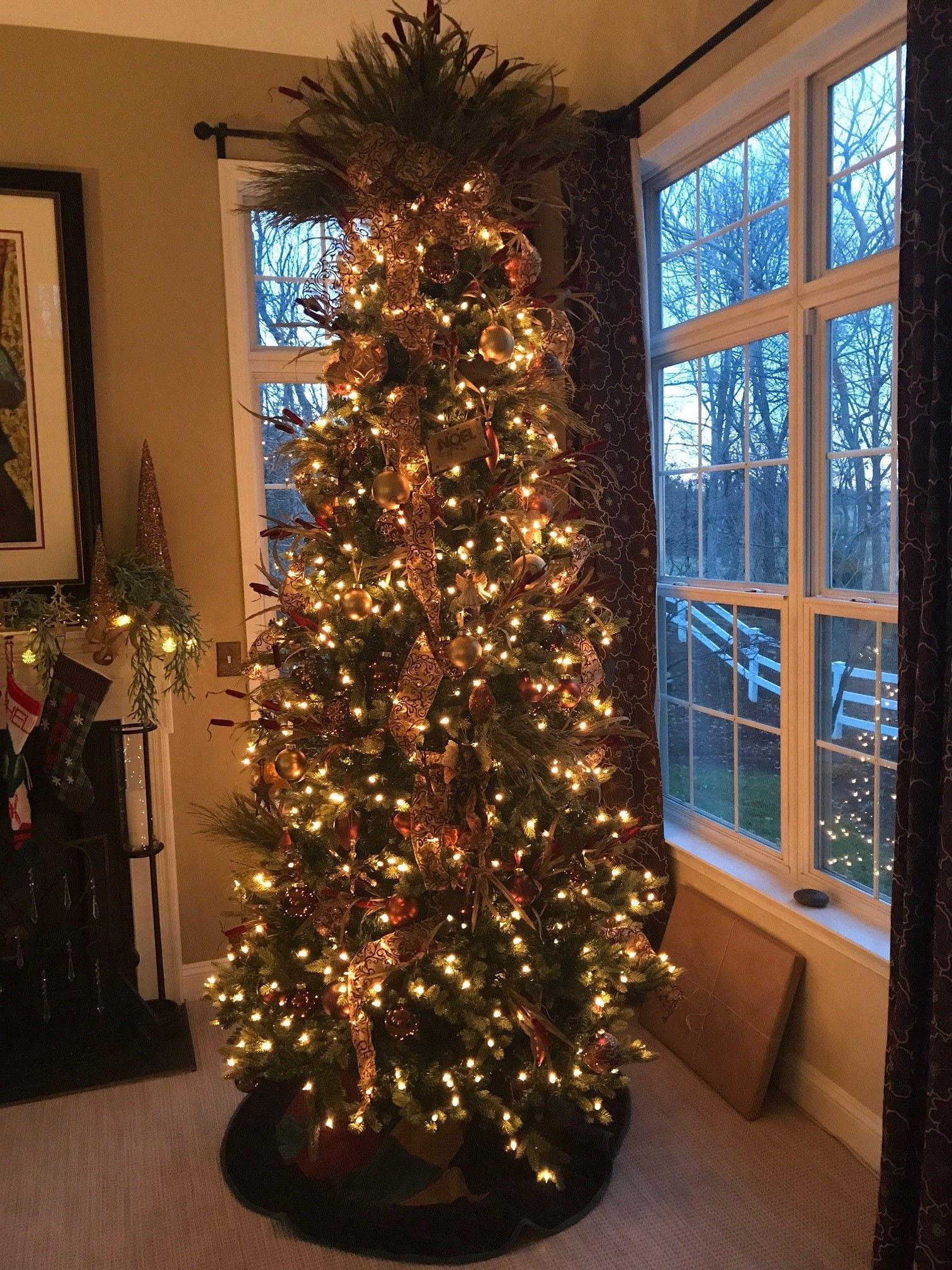 Jayne Christmas Dec 4.jpg