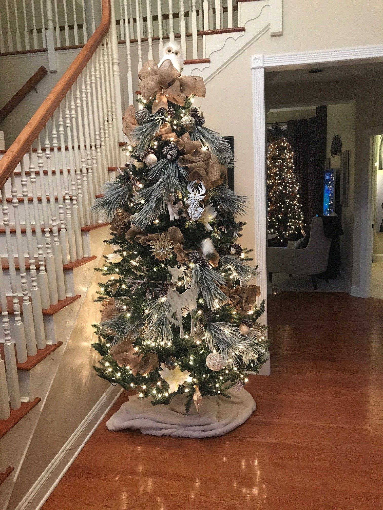 Jayne Christmas Dec 5.jpg