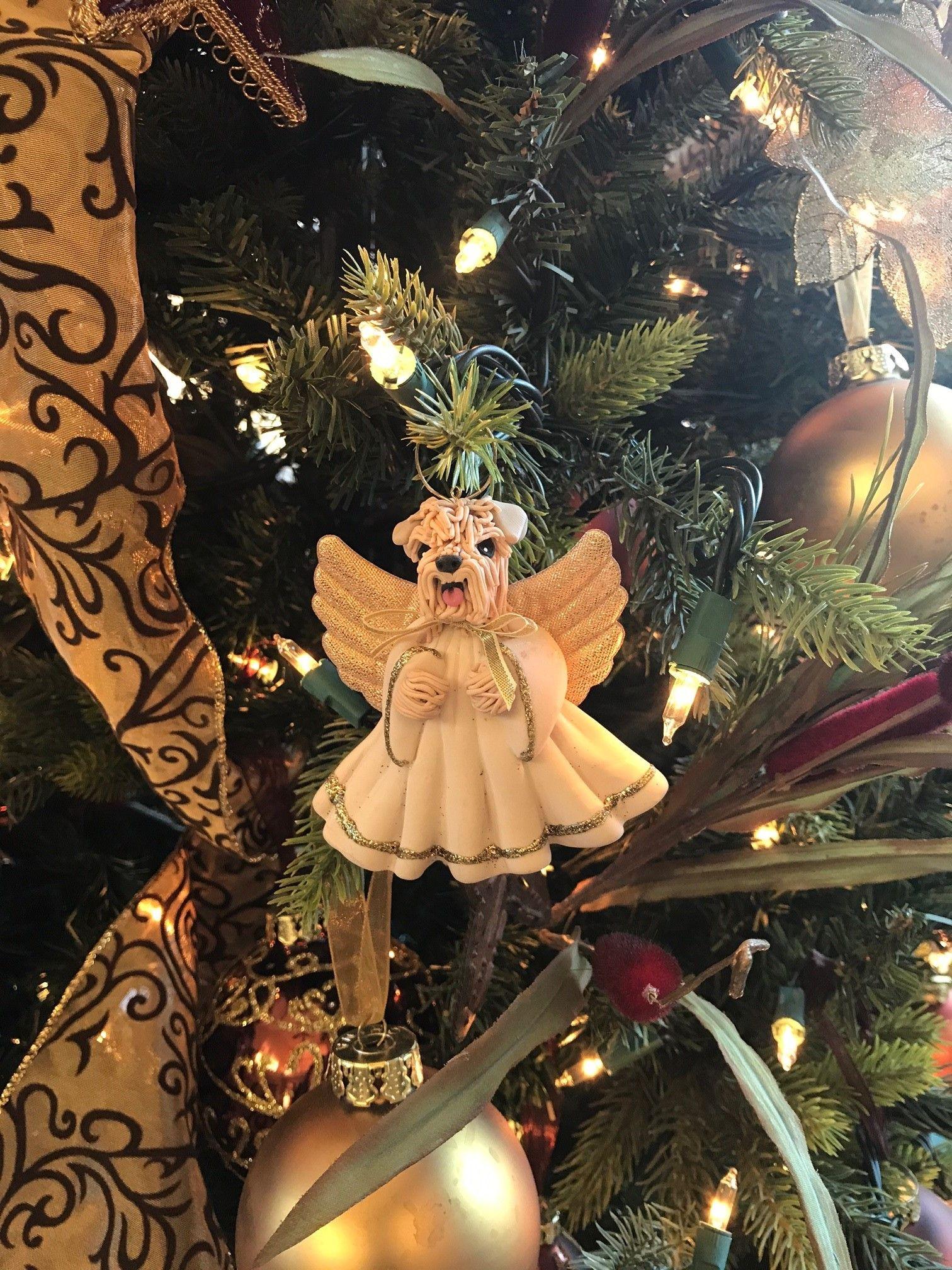 Jayne Christmas Dec 7.jpg